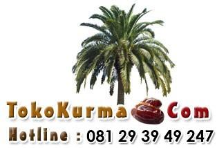 TokoKurma.Com